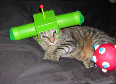 http://unitedcats.files.wordpress.com/2007/01/cat_satellite.jpg