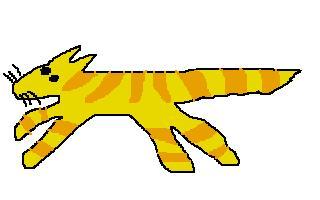 fast_cat.JPG