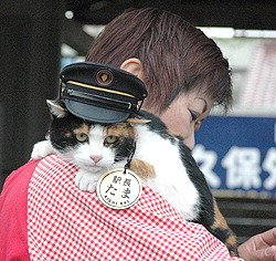 stationmaster_cat.jpg