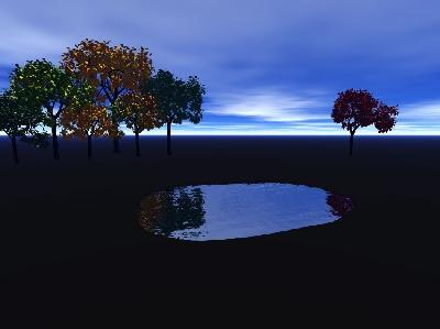 daytime-pond.jpg