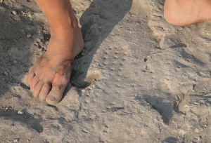 roman_footprint.jpg