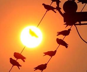 red_sun.jpg