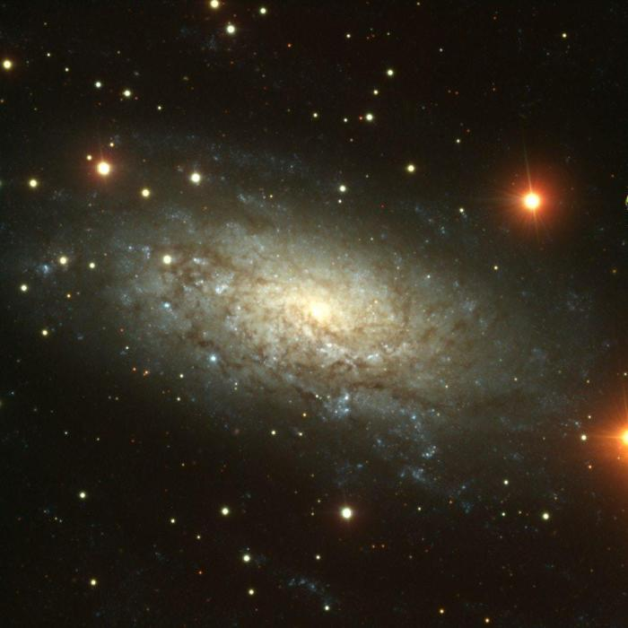 NGC_3621