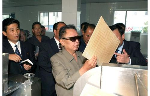 kim il jong looks at things