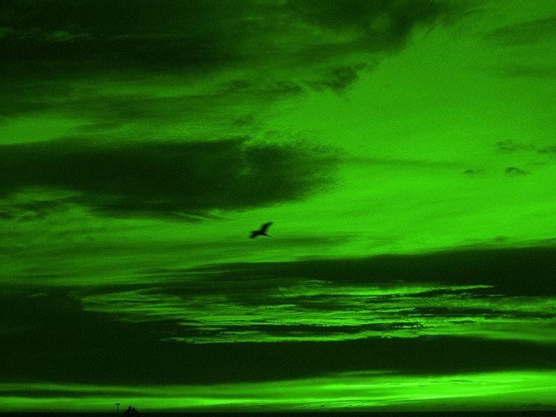 green-sky-c6f49480-4d18-4b7d-af26-65b5e91471f3